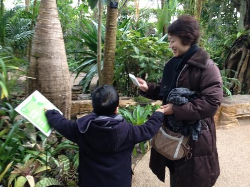 県立植物園へ_a0126418_953591.jpg
