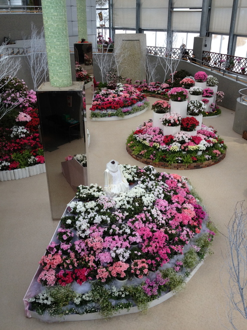県立植物園へ_a0126418_965842.jpg