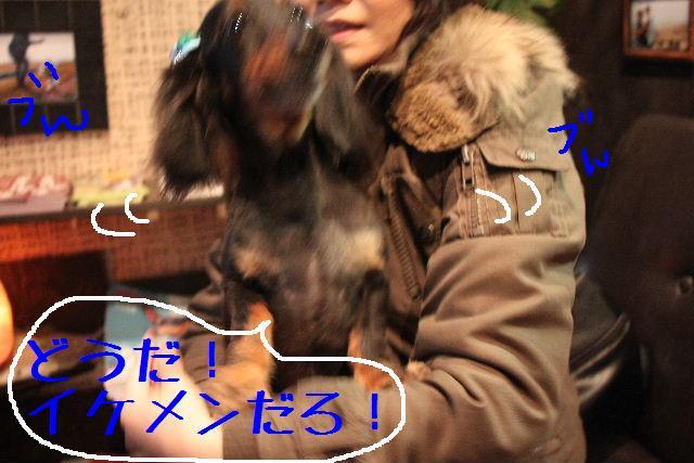 b0130018_925414.jpg