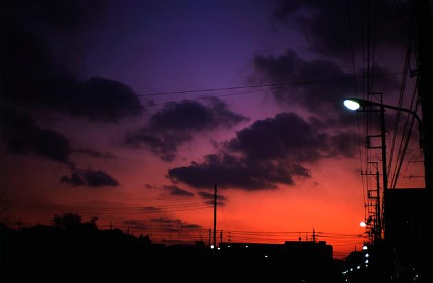 2012-1-29 Sweet Hour _c0136330_7541488.jpg