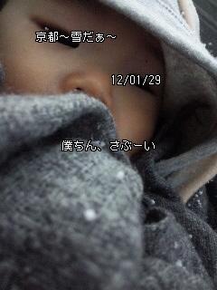 ひらりひらり〜_c0164268_2294175.jpg