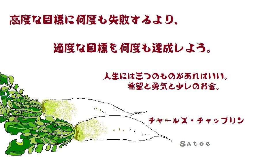 d0083472_19105739.jpg