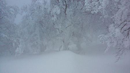 雪山登山BCスノーボード_e0173183_102377.jpg