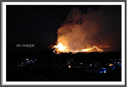 奈良の若草山山焼き!!_c0207890_058047.jpg