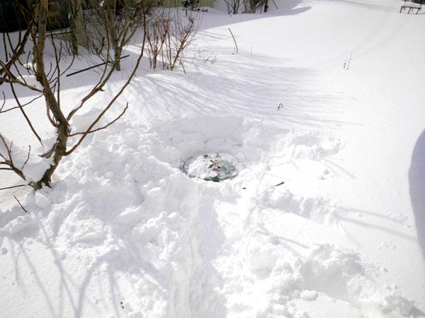 ミャンハウスに雪の階段(^^)v_a0136293_17164393.jpg