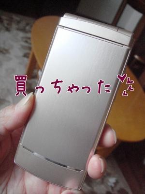 b0081503_16241864.jpg