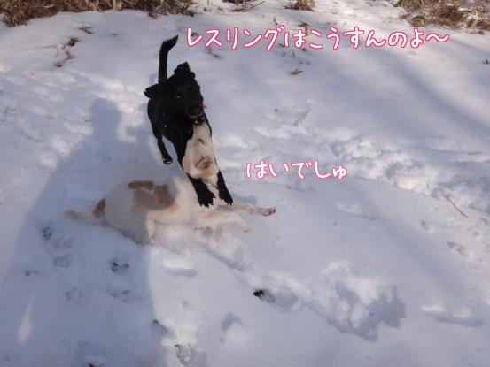 風子姉さんの遊び方の指導_f0064906_1624177.jpg