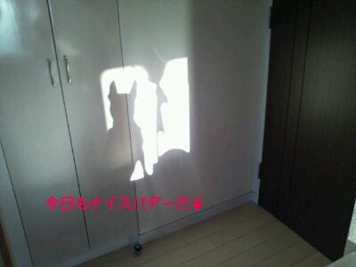 c0220715_748482.jpg