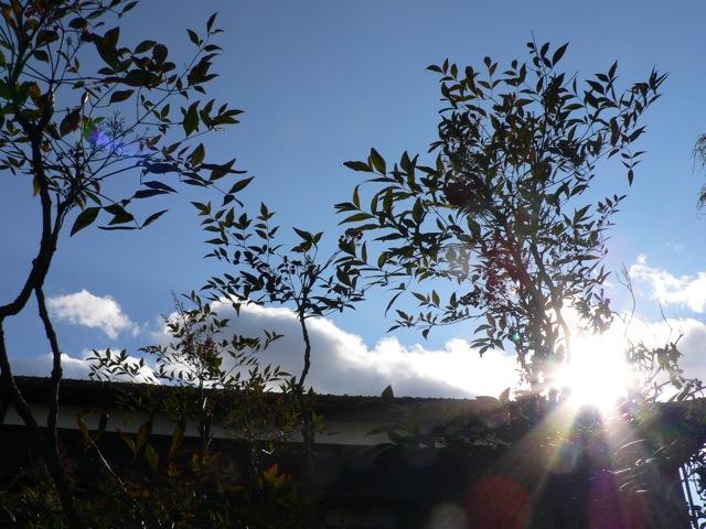 f0143119_2011746.jpg