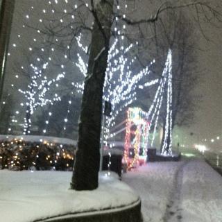 雪中ラン_a0210340_18472065.jpg