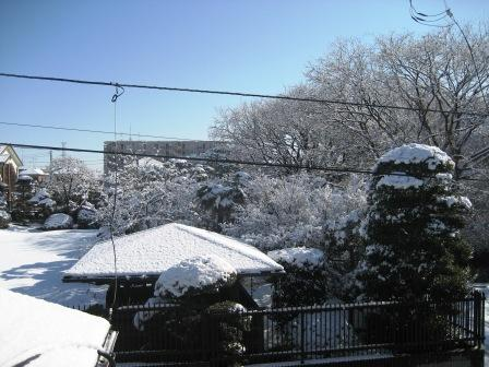 寒さ厳しいです。☃_c0206545_13154590.jpg