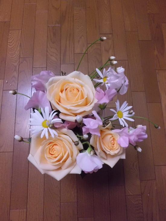 「おめでとう♪」を集める_a0025572_012392.jpg