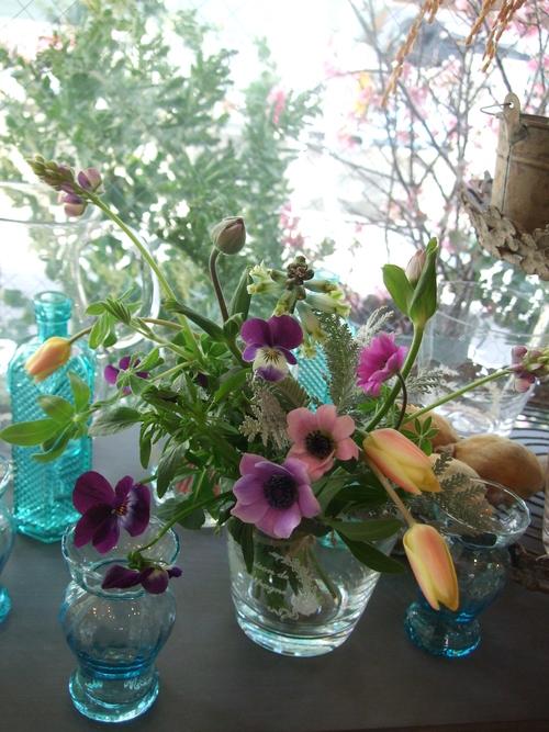 オークリーフ(原種のアネモネとチューリップの小さな花束)_f0049672_1862499.jpg