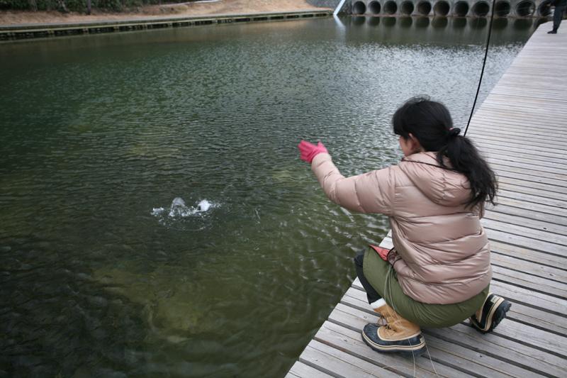 初めてのFly Fishing_f0166390_225955.jpg