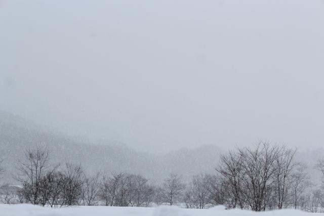 青空・吹雪・夕焼けの雪景色_a0158797_22322172.jpg