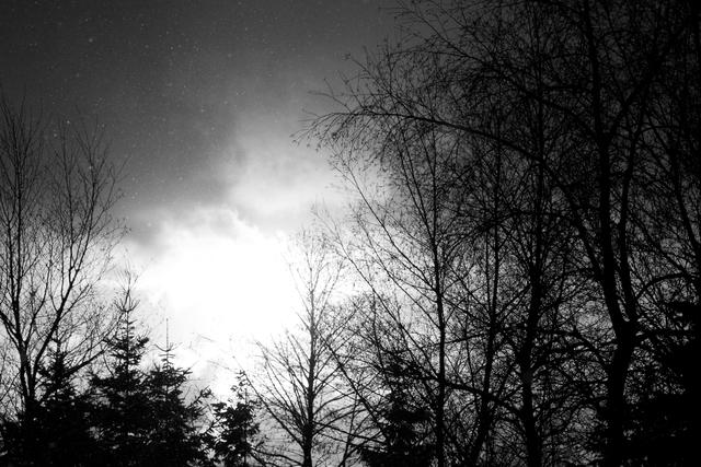 青空・吹雪・夕焼けの雪景色_a0158797_22343266.jpg