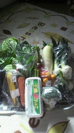 今〜野菜…高いっす!!_d0051146_13422154.jpg