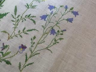 Campanula rotundifolia_e0158687_959780.jpg