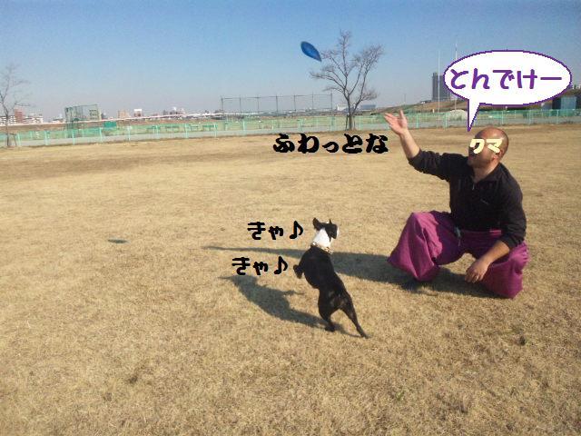★土手に現れる犬好きなクマ★_d0187891_22265576.jpg