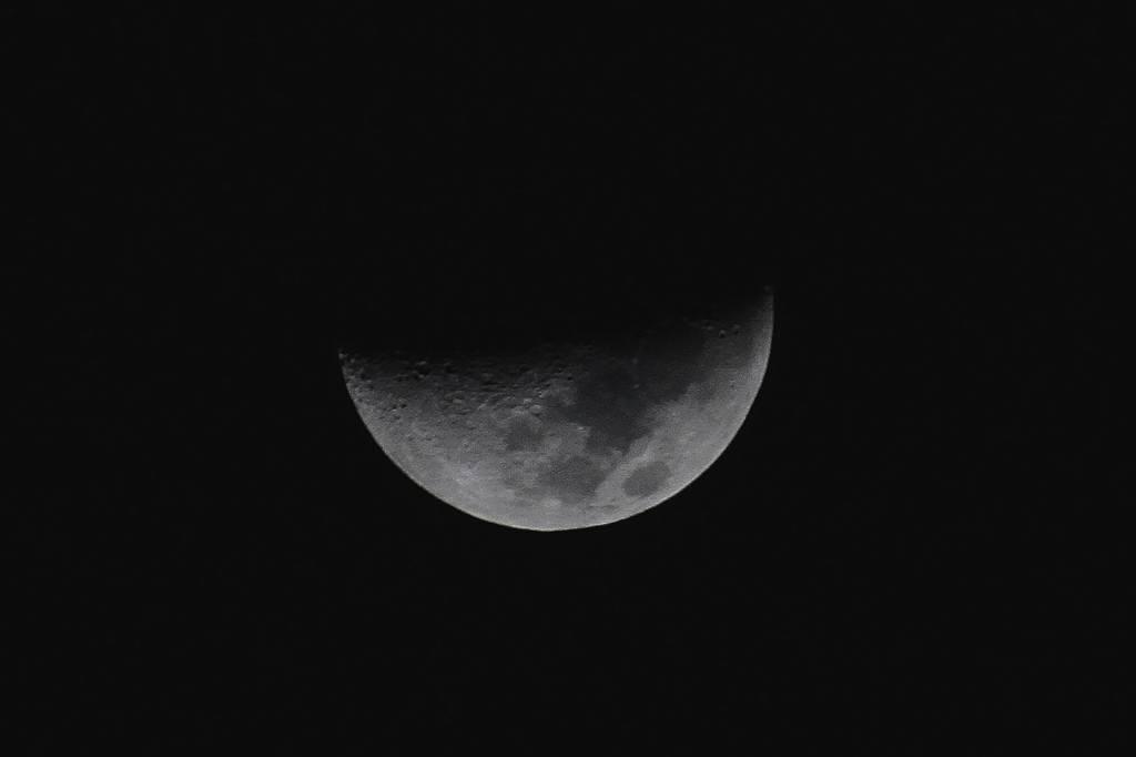 自宅近所のヤマガラ/月・木星・金星_b0024798_10175735.jpg