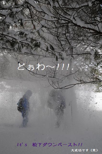 b0119620_11234044.jpg