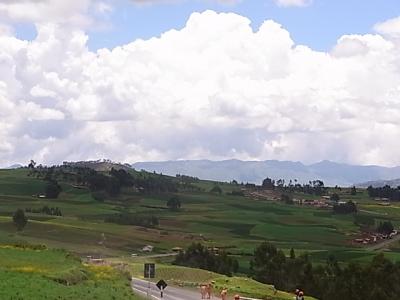 ++原産地ペルーで出会ったジャガイモ++_e0140921_8521186.jpg