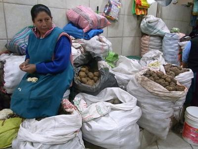 ++原産地ペルーで出会ったジャガイモ++_e0140921_914280.jpg