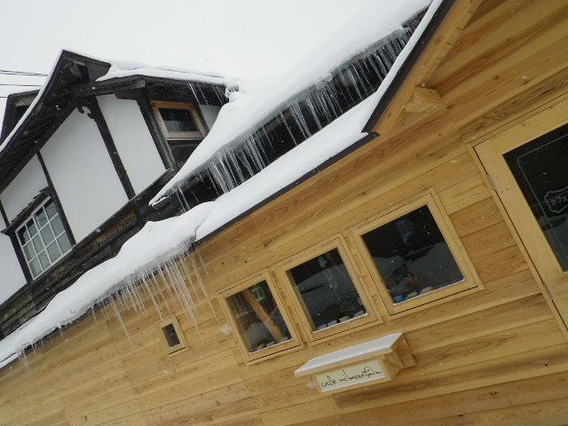 雪ですよ~_b0207642_1342281.jpg