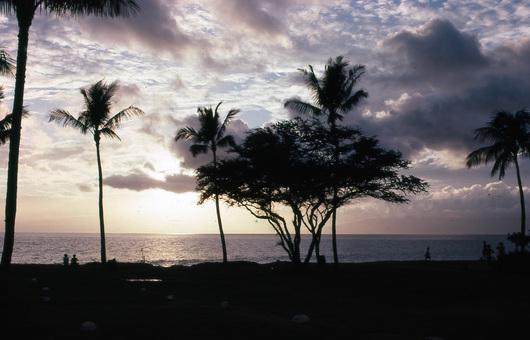 昔のハワイ画像_f0128542_1054646.jpg