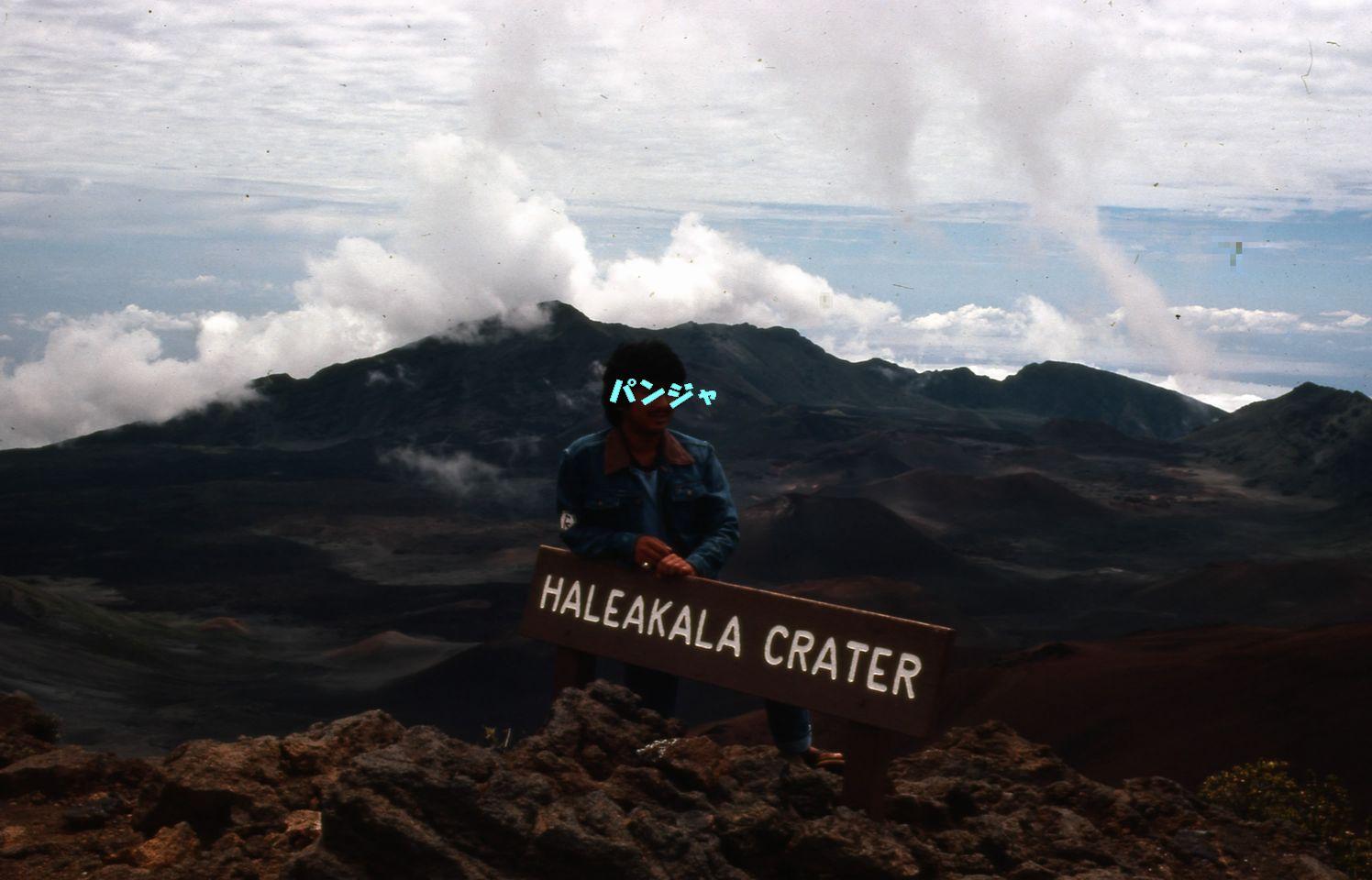 昔のハワイ画像_f0128542_1095799.jpg
