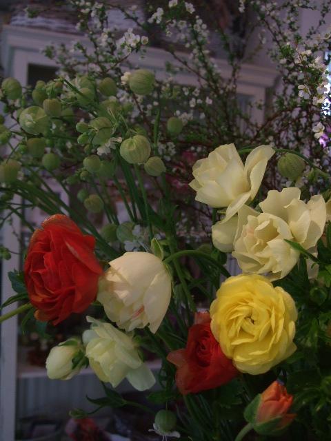 オークリーフ(モノトーンの花)_f0049672_14191260.jpg