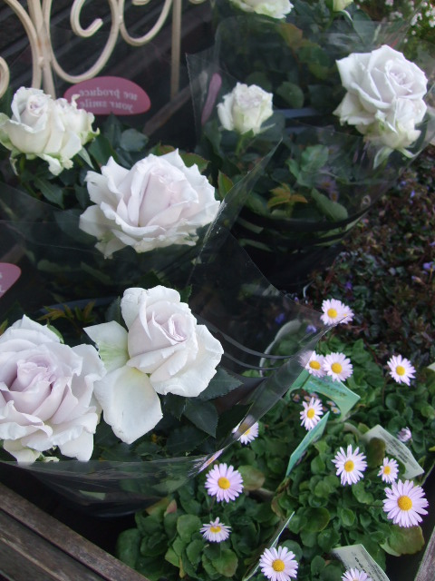オークリーフ(モノトーンの花)_f0049672_1424388.jpg