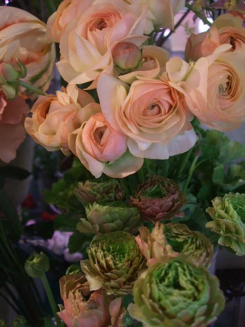 オークリーフ(モノトーンの花)_f0049672_1482464.jpg