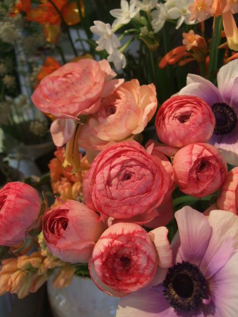 オークリーフ(モノトーンの花)_f0049672_1482952.jpg