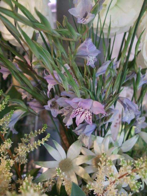 オークリーフ(モノトーンの花)_f0049672_1485646.jpg