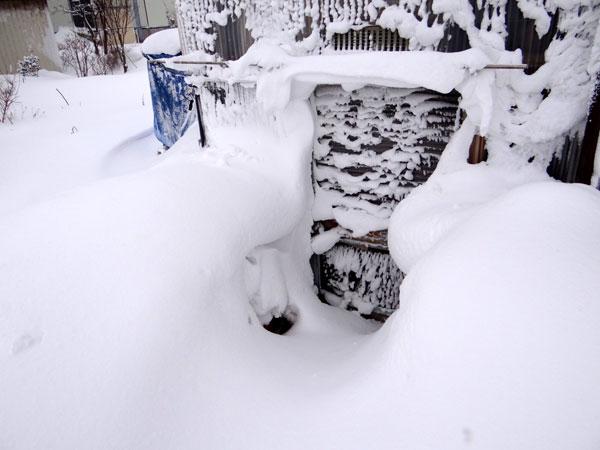 昨日はこの冬一番の吹雪でした ^^_a0136293_1653995.jpg