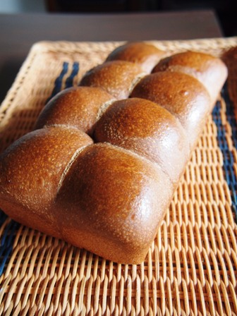ココア生地のパン_e0167593_110201.jpg