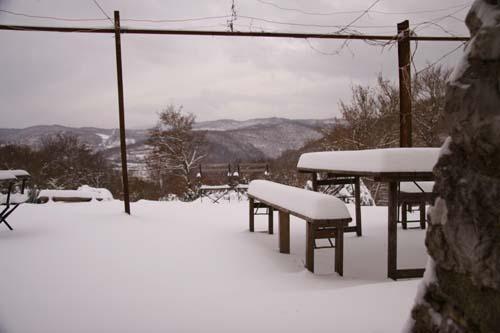 大雪デス_f0106597_182857.jpg