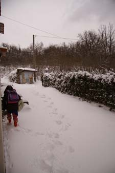 大雪デス_f0106597_18433510.jpg