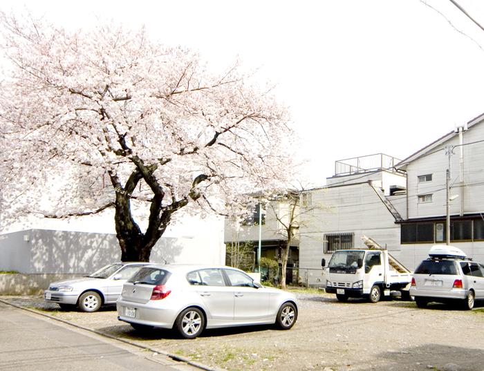西沢立衛さんとの建築プロジェクト_c0231905_12105217.jpg