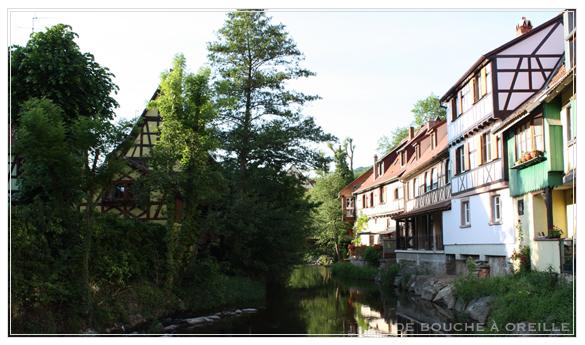 Vin d\'Alsace - Domaine Engel Pinot Gris 2008 -_d0184921_14365836.jpg