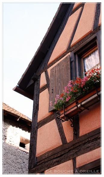 Vin d\'Alsace - Domaine Engel Pinot Gris 2008 -_d0184921_14415135.jpg
