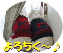 f0084422_11532779.jpg