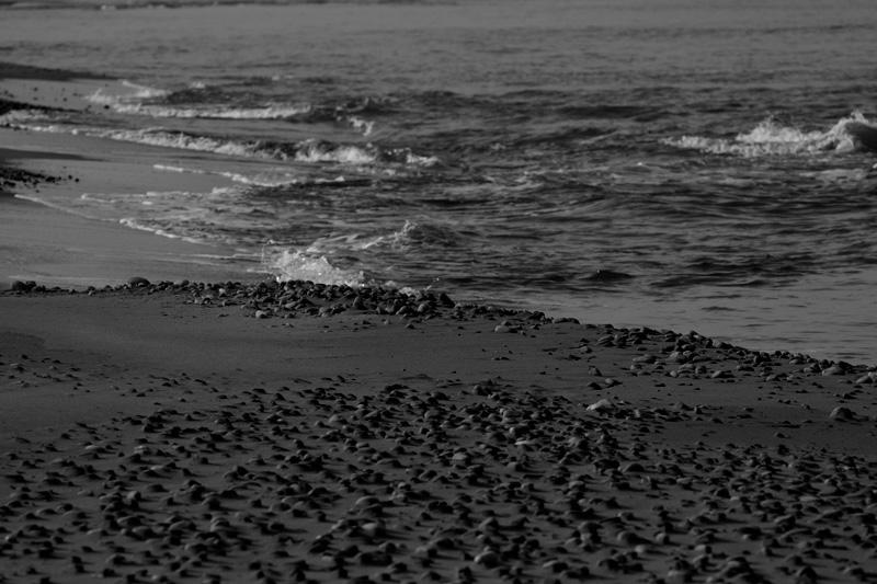 #1260 静かな冬の海・・・_b0177233_565831.jpg