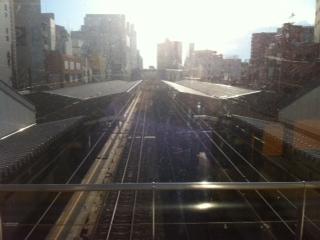 東京の人は元気_d0177560_9124152.jpg