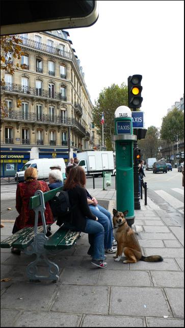 ☆回想のわが巴里の街 Memoires du Voyage Paris2005 その二_a0031363_0394769.jpg