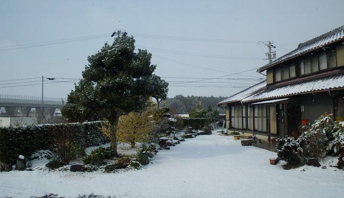 雪化粧。。。_c0197578_1113545.jpg