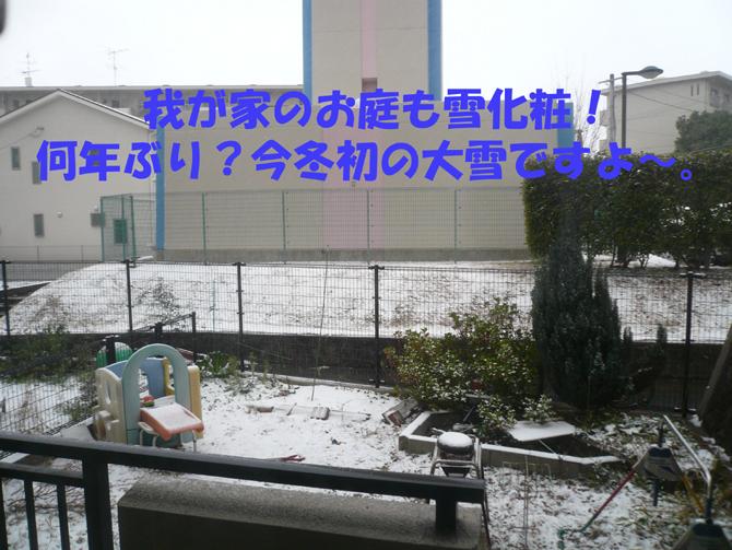 f0183484_18331545.jpg