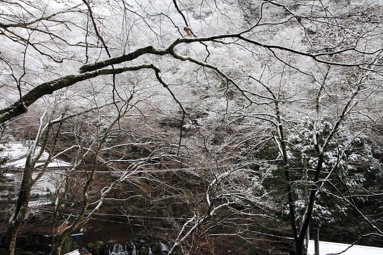 貴船神社_e0051888_22502892.jpg