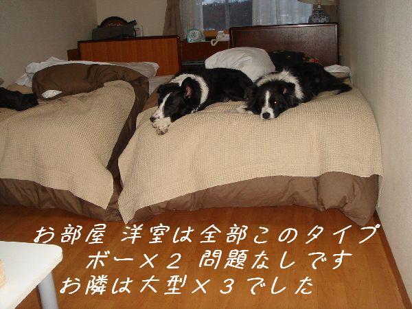 b0101991_22304851.jpg